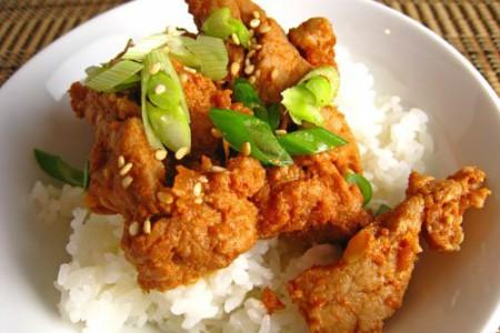 Donburi, plato típico de la cocina japonesa
