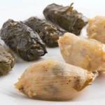 El yaprac: una especialidad de Israel
